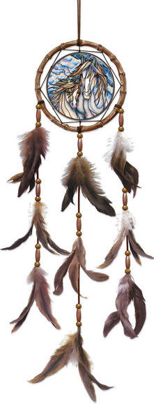Amia 42640 The Dream Creates Journey Dreamcatcher