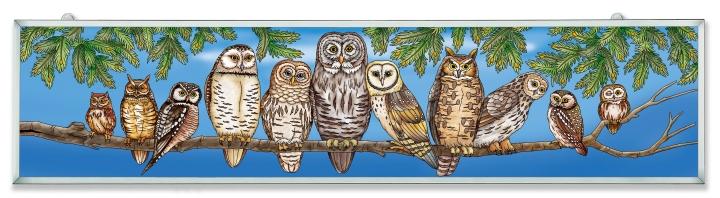 Amia 42645 Owls Night Watch Panel