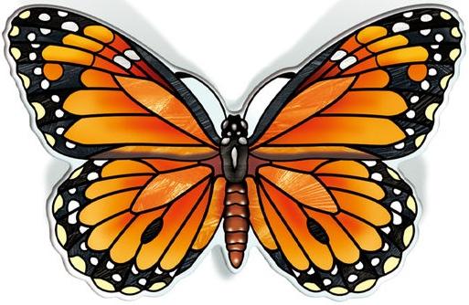 Amia 42836 Orange Sulphur Magnet