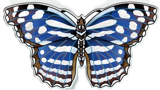 Amia 42838 Mexican Bluewing Magnet