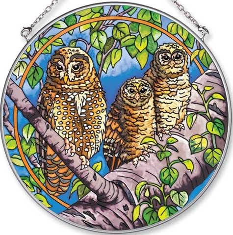 Amia 5576 Aec Spotted Owls Large Circle Suncatcher