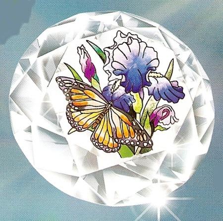 Amia 9093 Iris & Butterfly
