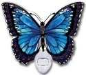 Amia 42319 Blue Morpho Water Cut Night Light Nightlight