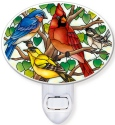 Amia 42801 Wild Birds Co op Night Light Nightlight