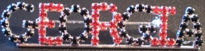 Jewelry - Fashion PINGeorgia2 Georgia Bulldogs Pin Brooch