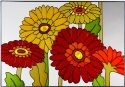 Silver Creek Art Glass V271 Daisies Horizontal Panel
