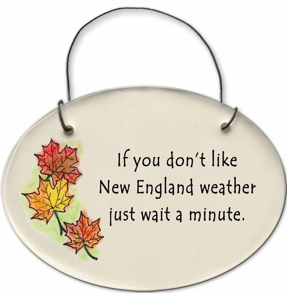 August Ceramics 2180A Autumn leaves If you Don't like New England weather Mini Disk