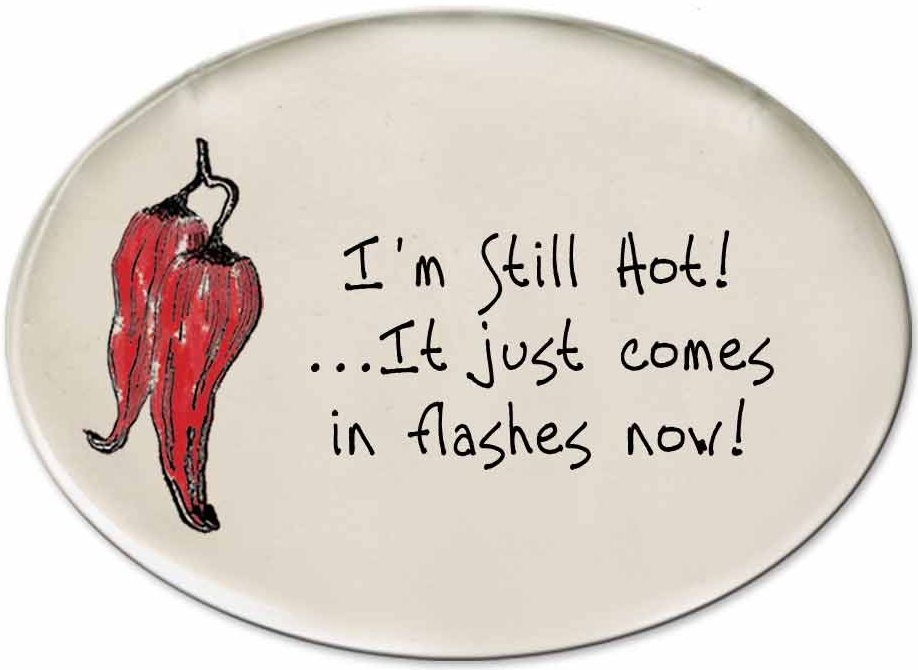August Ceramics 3151M Chili Pepper - I'm still hot flashes Disk Magnet