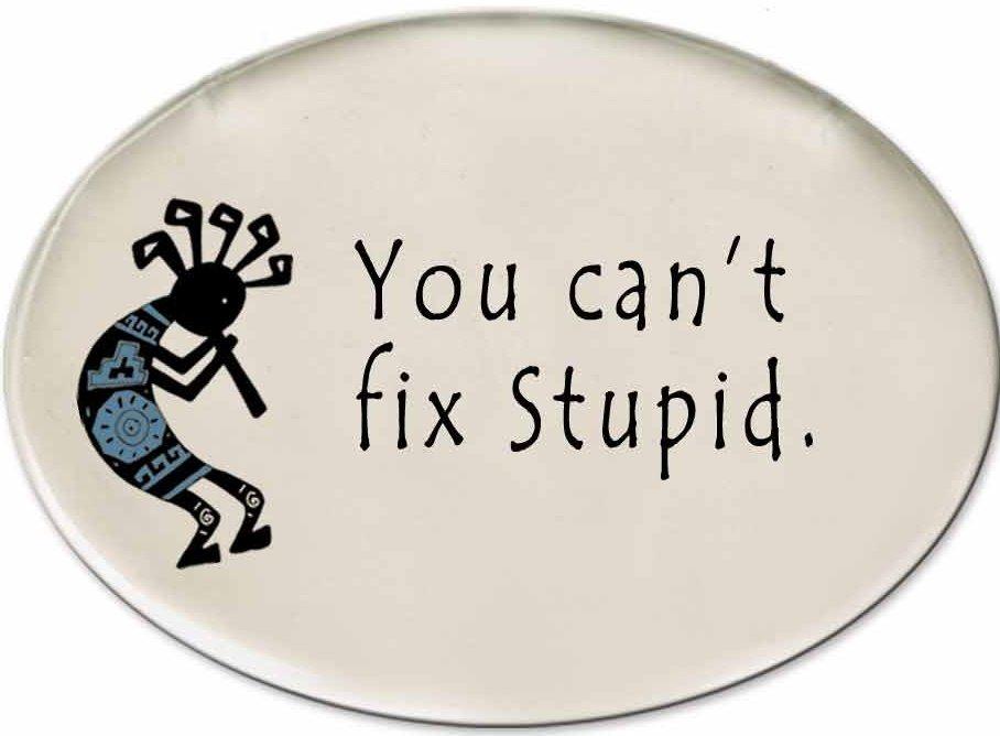 August Ceramics 3152G Kokopelli - You Can't fix stupic Disk Magnet