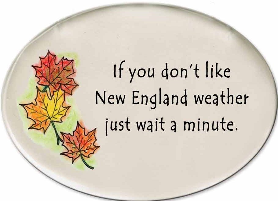 August Ceramics 3180A Autumn leaves If you Don't like New England weather Disk Magnet