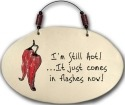 August Ceramics 4551M I'm still hot it just comes in flashes now Beaded Plaque