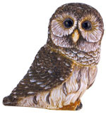 Pot Bellys PBZOW8 Barred Owl