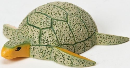 Home Grown 4022971 Cantaloupe Sea Turtle
