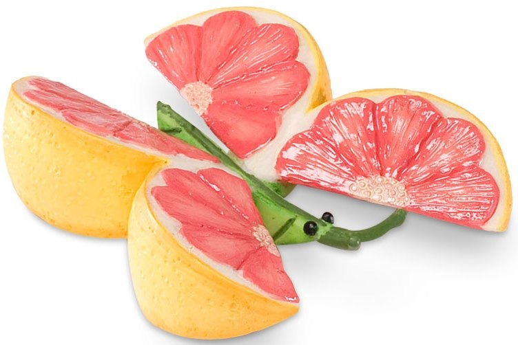 Home Grown 4027312 Grapefruit Butterfly Mini