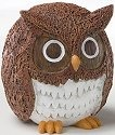 Home Grown 4022978 Coconut Owl
