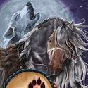 Horse of a Different Color 20555 Wolf Spirit Wall Art