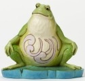 Jim Shore 4047081 Pint Lazy Frog Figurine