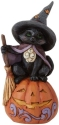 Jim Shore 6009515N Black Cat On Pumpkin Figurine