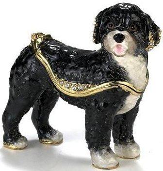 Kubla 3375 Portuguese Water Dog
