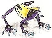 Kubla 5638P Frog Purple Set of 12 Purple Frog Magnets