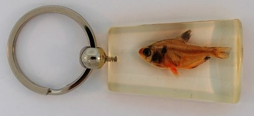 Kubla Crafts Bejeweled Enamel KUB 7526B Fish Key Ring