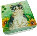 Kubla Crafts Capiz KUB 1572B Capiz Box Kitten Flower