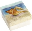Kubla Crafts Capiz KUB 1596 Conch Shell Capiz Box
