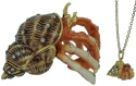 Kubla Crafts Bejeweled Enamel KUB 4-3394HN Hermit Crab Box with Necklace