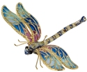 Insects - Dragonflies