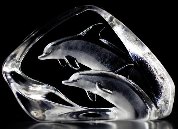 Maleras 33576 Dolphins