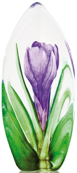 Maleras 33876 Crocus Purple NA Exclusive