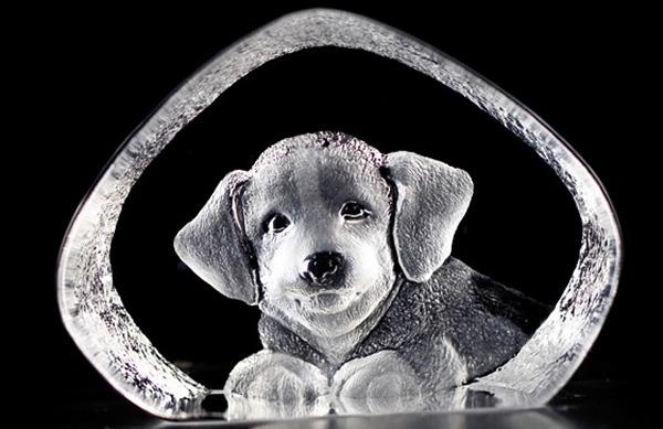 Maleras 88142 Dog