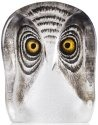 Mats Jonasson Crystal 34104 Owl Painted small