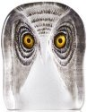 Mats Jonasson Crystal 34105 Owl Painted medium