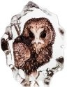 Mats Jonasson Crystal 88177 Miniature Owl
