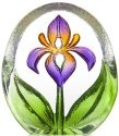 Maleras 88218 Miniature Lily Purple