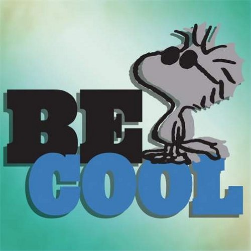 Special Sale 24434 Peanuts 24434 Be Cool Canvas Wall Art 8x8 Woodstock